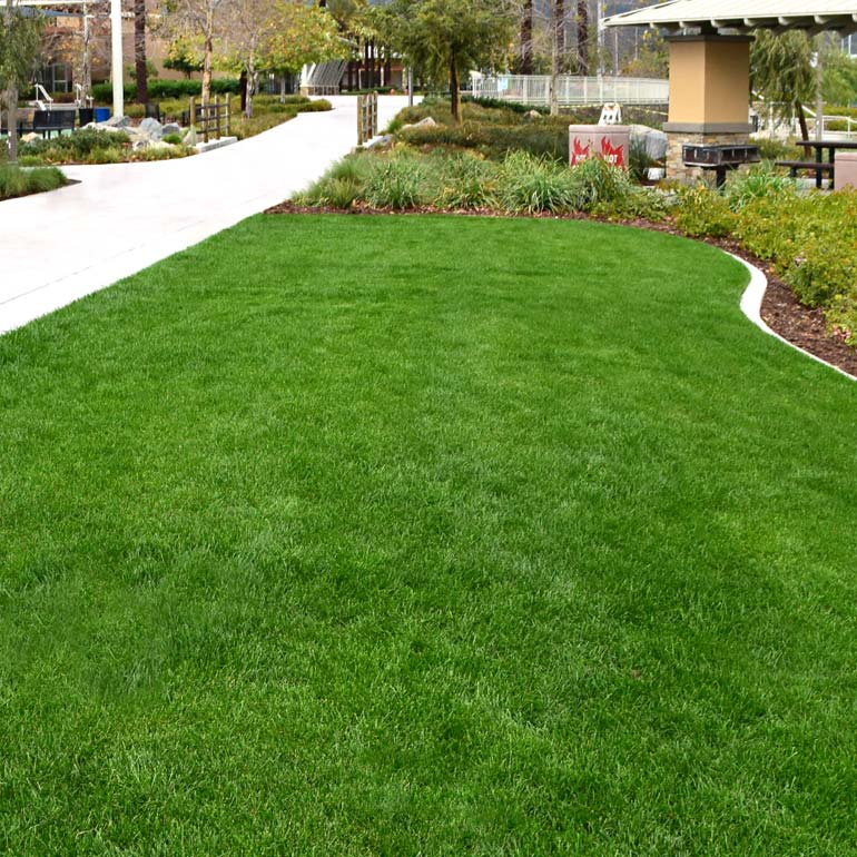 Commercial and Residential Landscape Maintenance for Tacoma, WA and Puget Sound - Olympic Landscape LLC