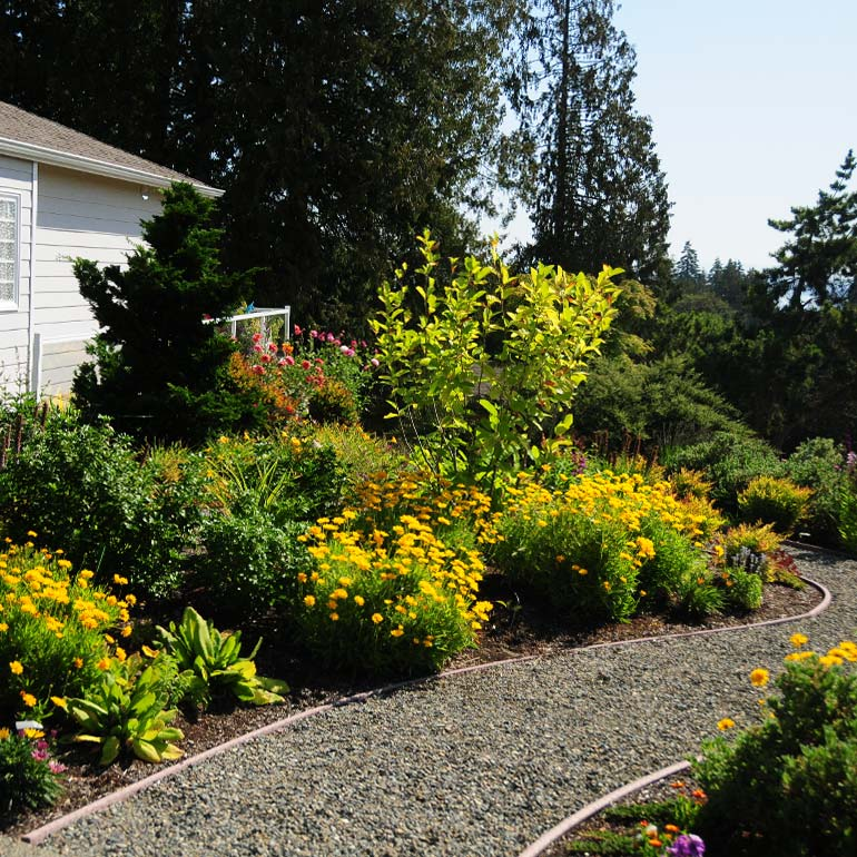 Federal Way, WA and Redondo Landscape Design, Construction, Service and Maintenance - by Olympic