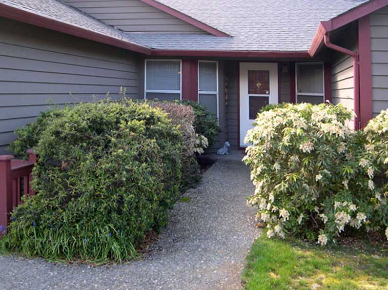 BEFORE:  This overgrown planting makes this entryway feel crowded and uninviting.