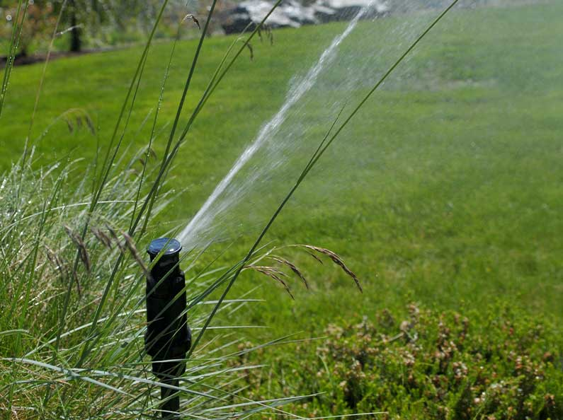 Olympic's landscape construction includes the design and installation of sprinkler systems.