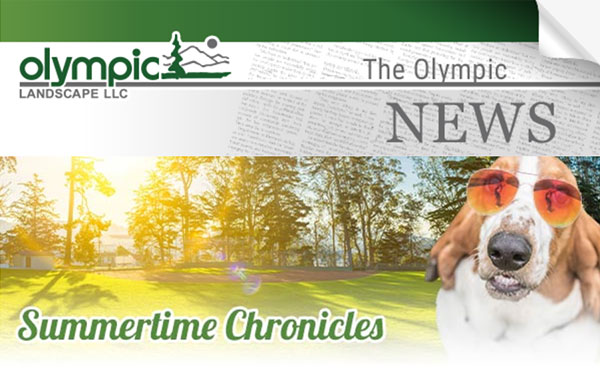 Newsletter - Olympic Landscape LLC serving Tacoma, WA and Puget Sound