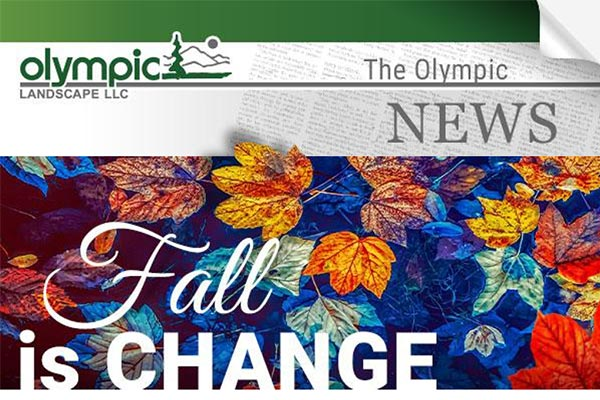Newsletter - Olympic Landscape LLC serving Tacoma, WA and Puget Sound