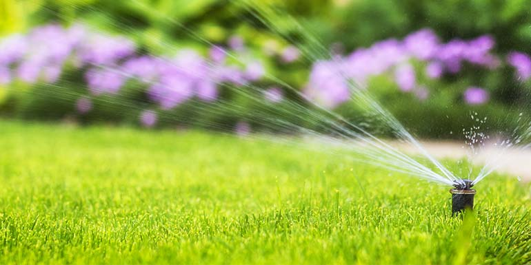 Sprinkler design, installation and service.