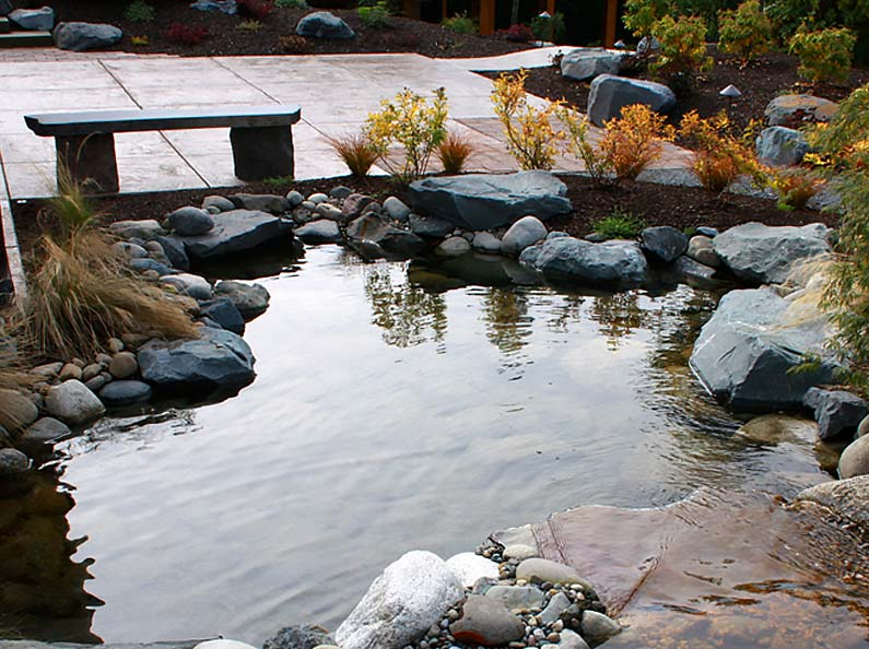 A beautiful pond water feature installed by Olympic Landscape can turn your outdoor space into a personal paradise.
